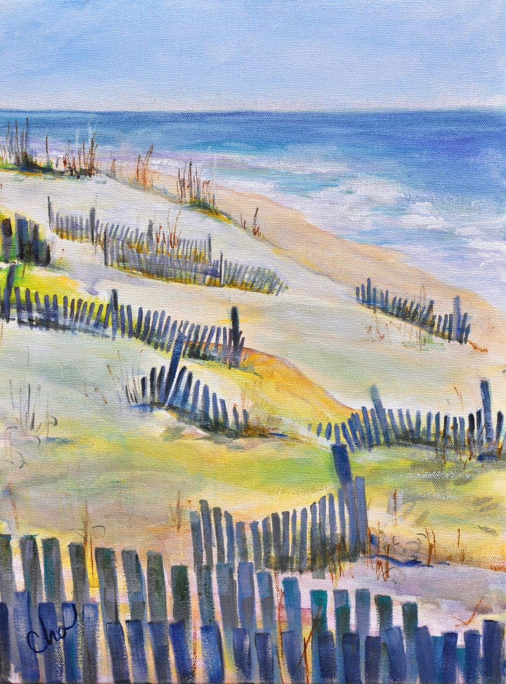 South Sandfences 16x12 Apr 2014.JPG