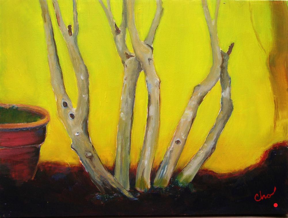 Crape Myrtle in oil 12x16 Sept 2011.JPG