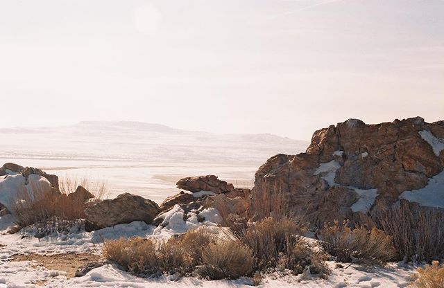 Looking back on some of our favorite memories from this year. Antelope Island, UT // Winter Tour // January-February 2016