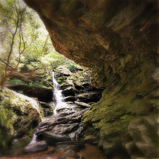 Finally got to make some new images today. Went seeking water at hanging rock state park. #drawntowater