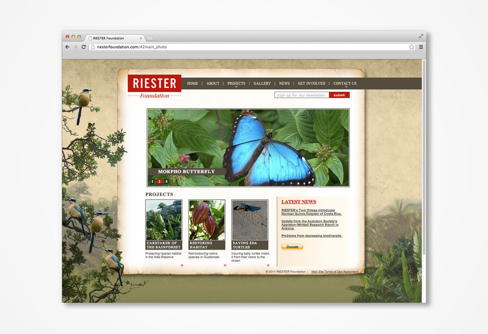 Riester-Foundation-website.jpg