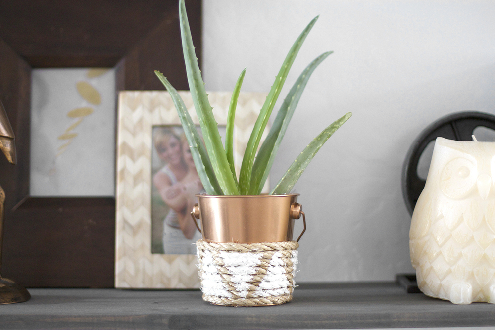 DIY Copper + Rope Planter