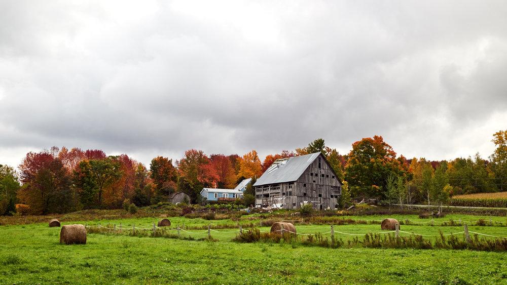 16-10-09_DunhamQC_Autumn_DSC1867.jpg