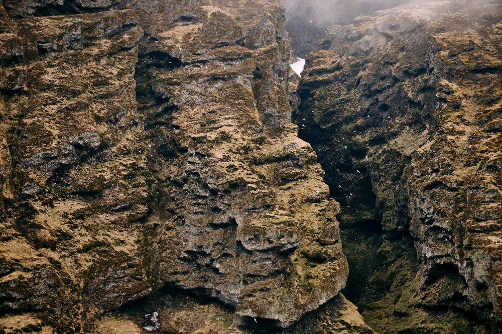 Puffins & Crag