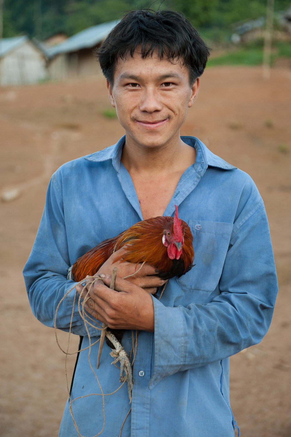 Hmong Man & Chicken