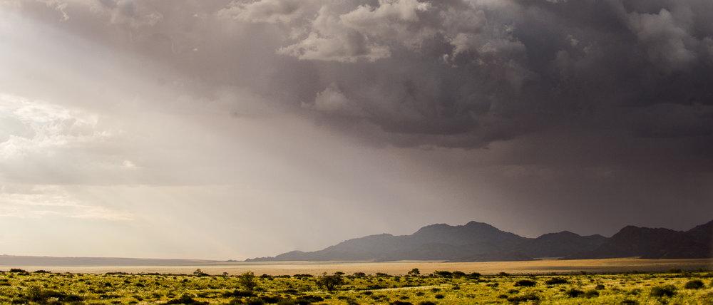 Desert Rainfall