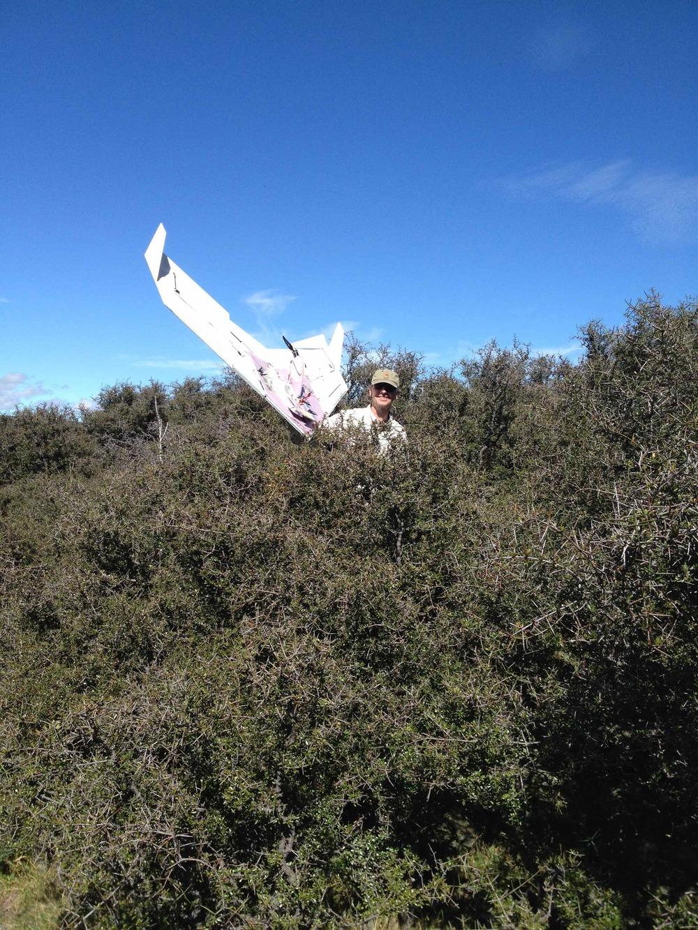 Tom braved the spiky matagouri bush to retrieve the Duck.