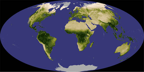 This is  classic NDVI image of the Earth taken by one of the Landsats. The NDVI equation was developed with assessing the amount of vegetation on Earth using, at the time, brand new satellite technology. The original Landsat had 4 bands and a 60 m resolution.