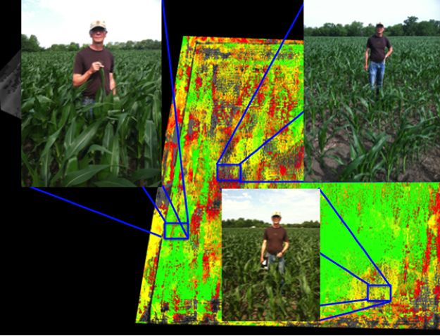 DVI image of approximately 40 acres of corn. This field looks very homogenous from ground, but aerial imagery indicates dramatic heterogeneity. In the green areas of the field, the corn is nearly chest high, while the corn is only ankle high or knee high in the red or yellow areas, respectively.