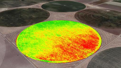 Agribotix Field Health Map