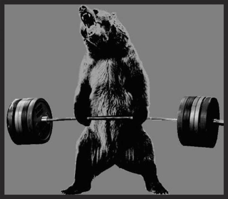 bear-deadlifts.jpg