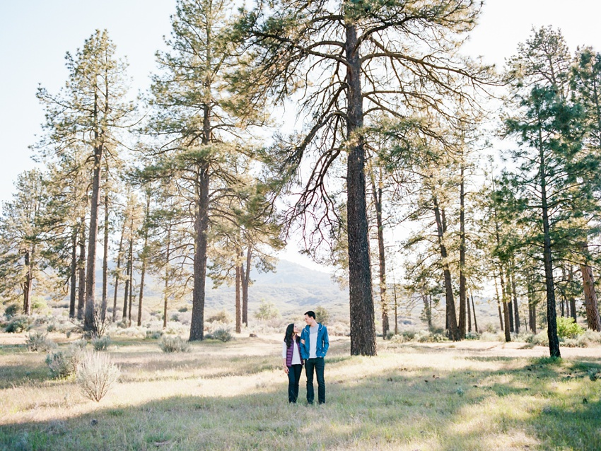 idyllwild-mountain-engagement-photography_0001.jpg