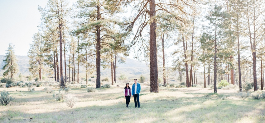 idyllwild-mountain-engagement-photography_0005.jpg