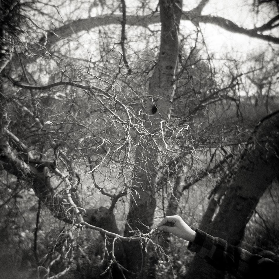 05/01 – Grasping, © Gina DeGideo