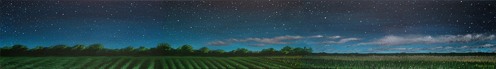 "Fireflies and Stars, 2009   10"" x 72"" Acrylic on canvas"