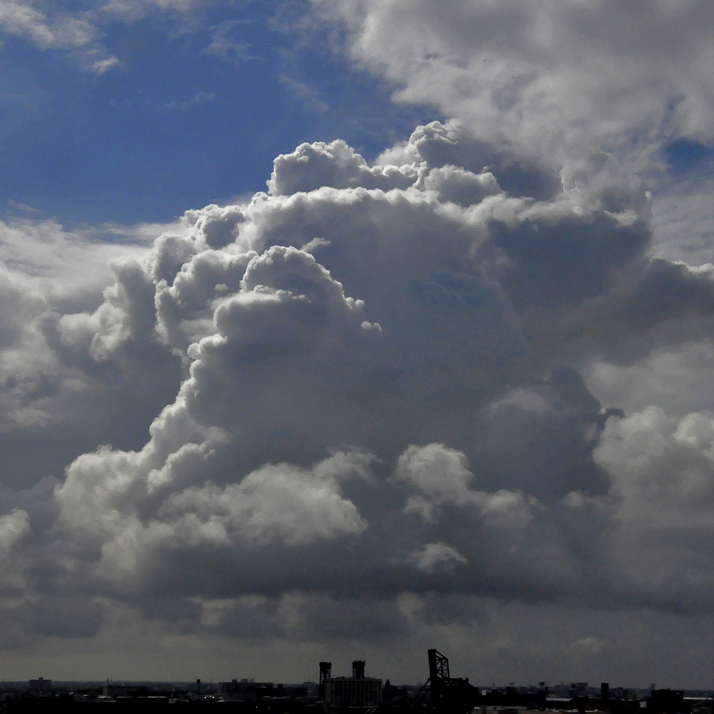 """Thunderhead Rising, 2011   36"""" x36"""""""