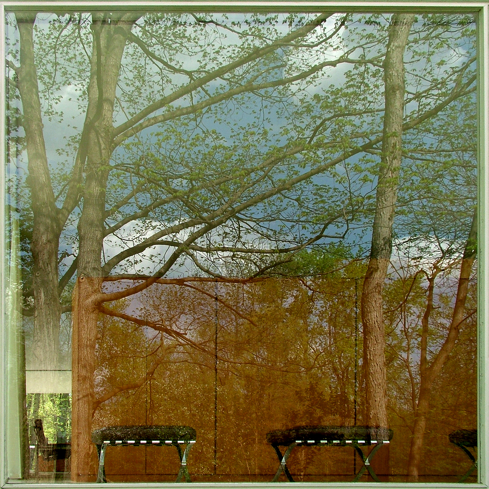 "Farnsworth House East Window Reflection, 2008  36""  x 36"""
