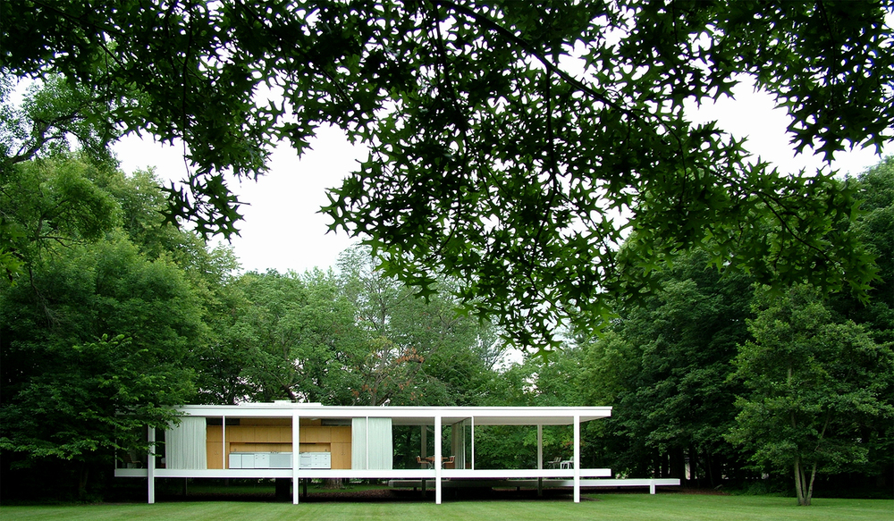 "Farnsworth House Transparent Arboretum, 2007  28"" x 48"""