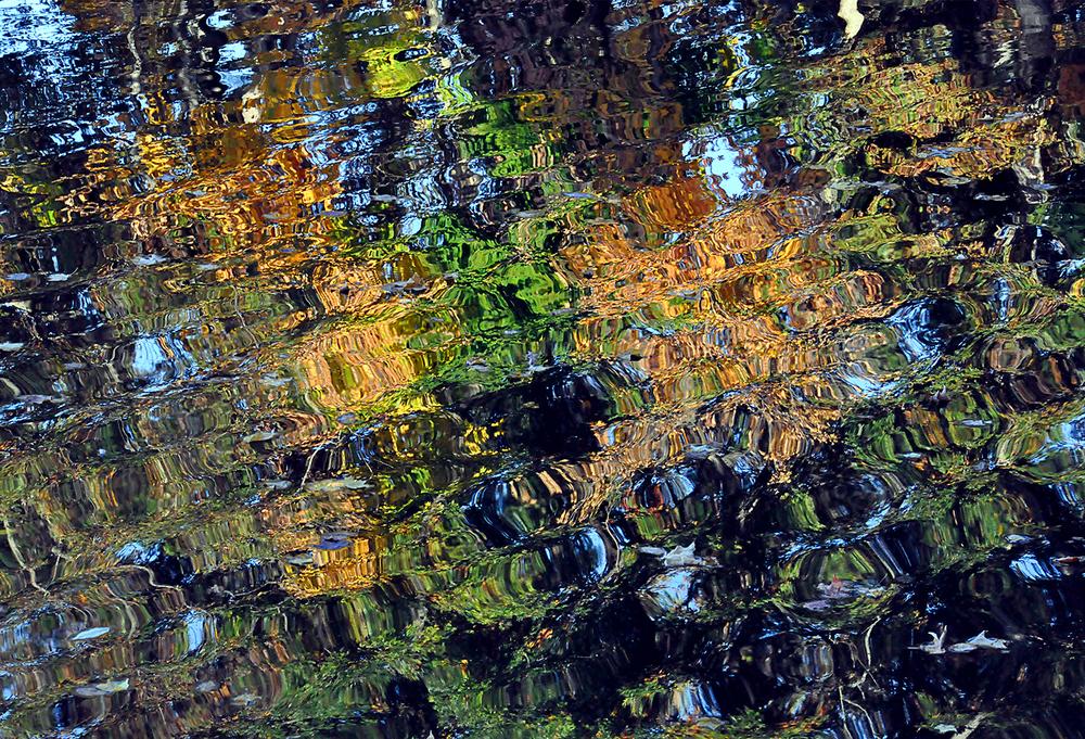 "Water Web, 2011 34"" x 48"""