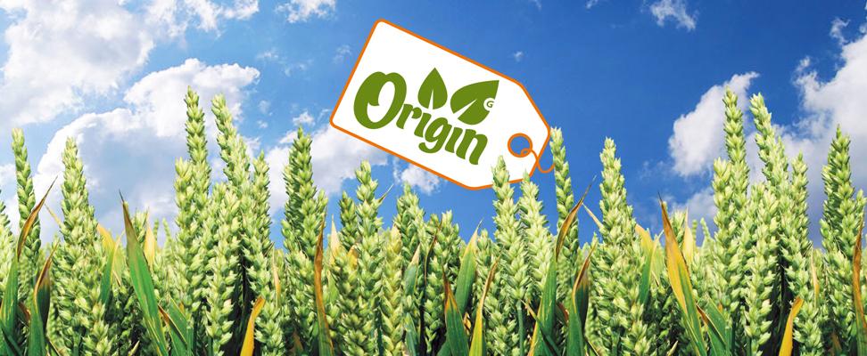 origin_home.jpg