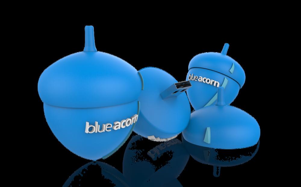 blue acorn.png