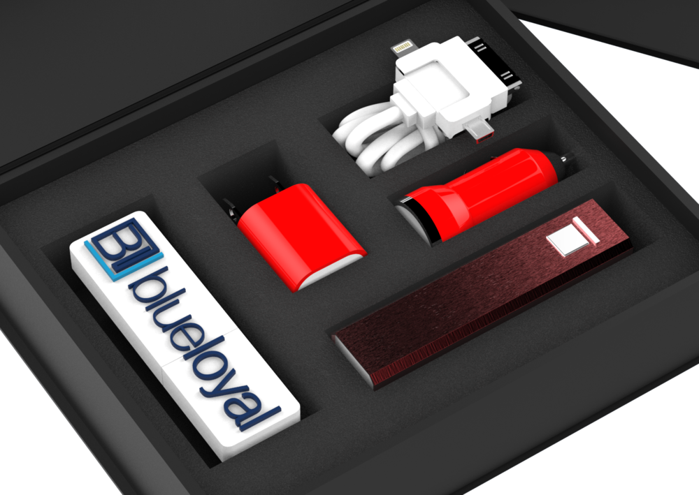 BL custom Charger set.896.png