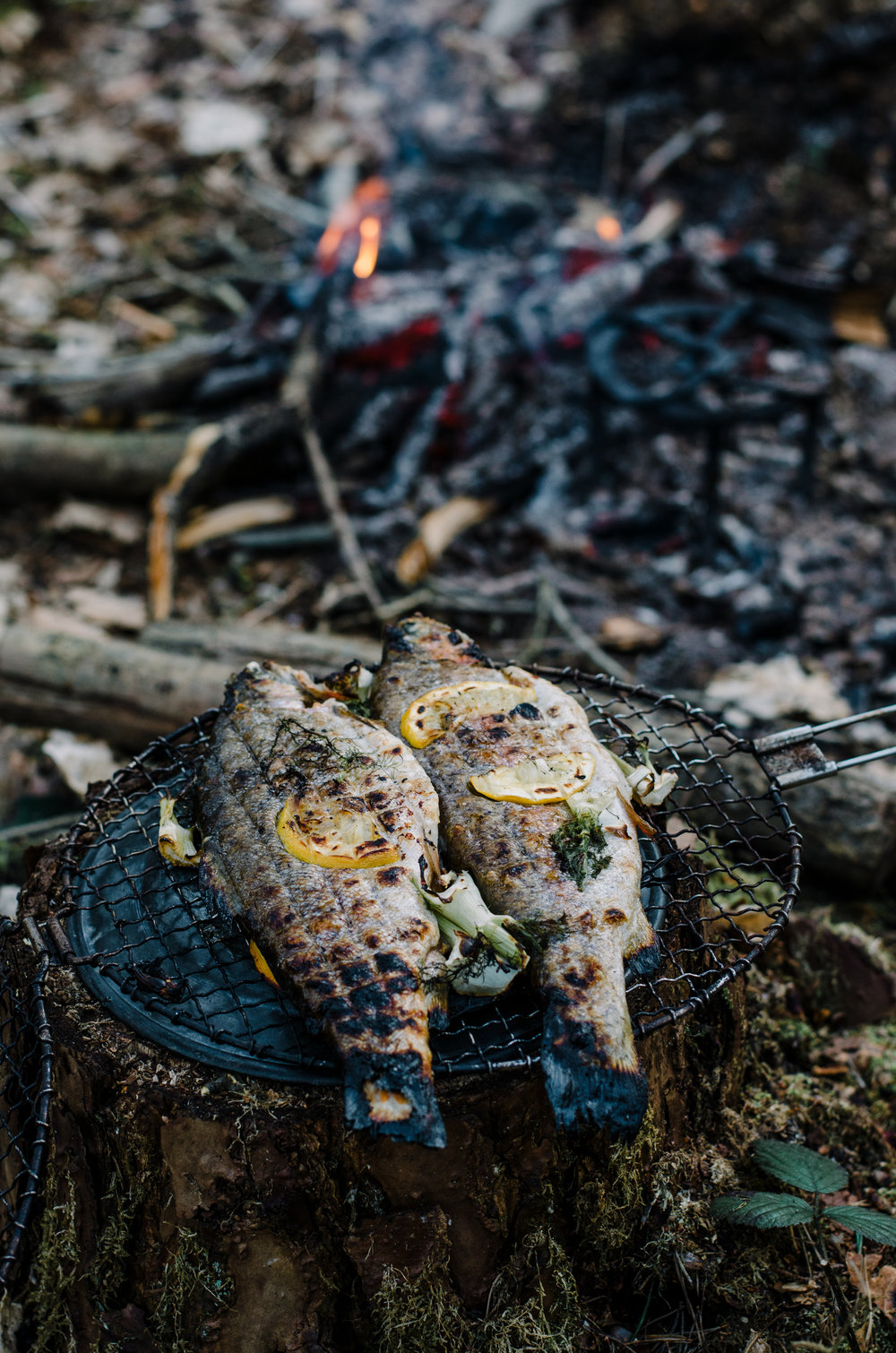 Fire & Wild- Wild Garlic & Campfire Dinner - Aiste Saulyte Photography-310.jpg
