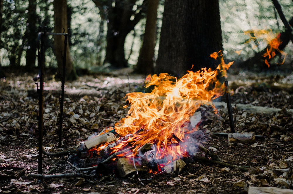 Fire & Widl - Deer Feast - Aiste Saulyte Photography-2.jpg