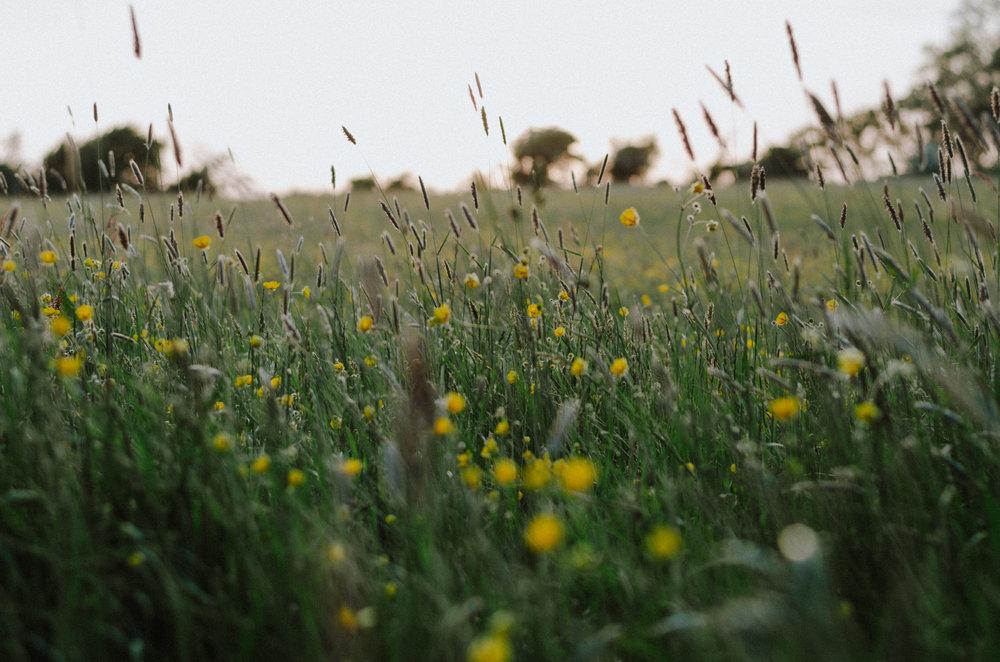Simplicity - Aiste Saulyte Photography-6.jpg