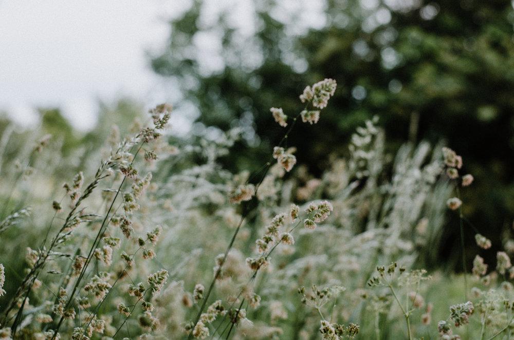 June 2018 - Aiste Saulyte Photography-4.jpg