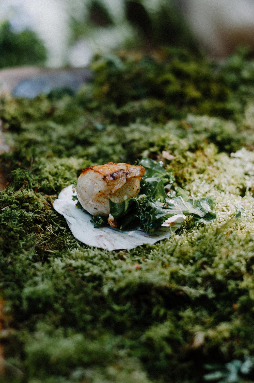 Fire & Wild - Forest Feast - Aiste Saulyte Photography-68.jpg