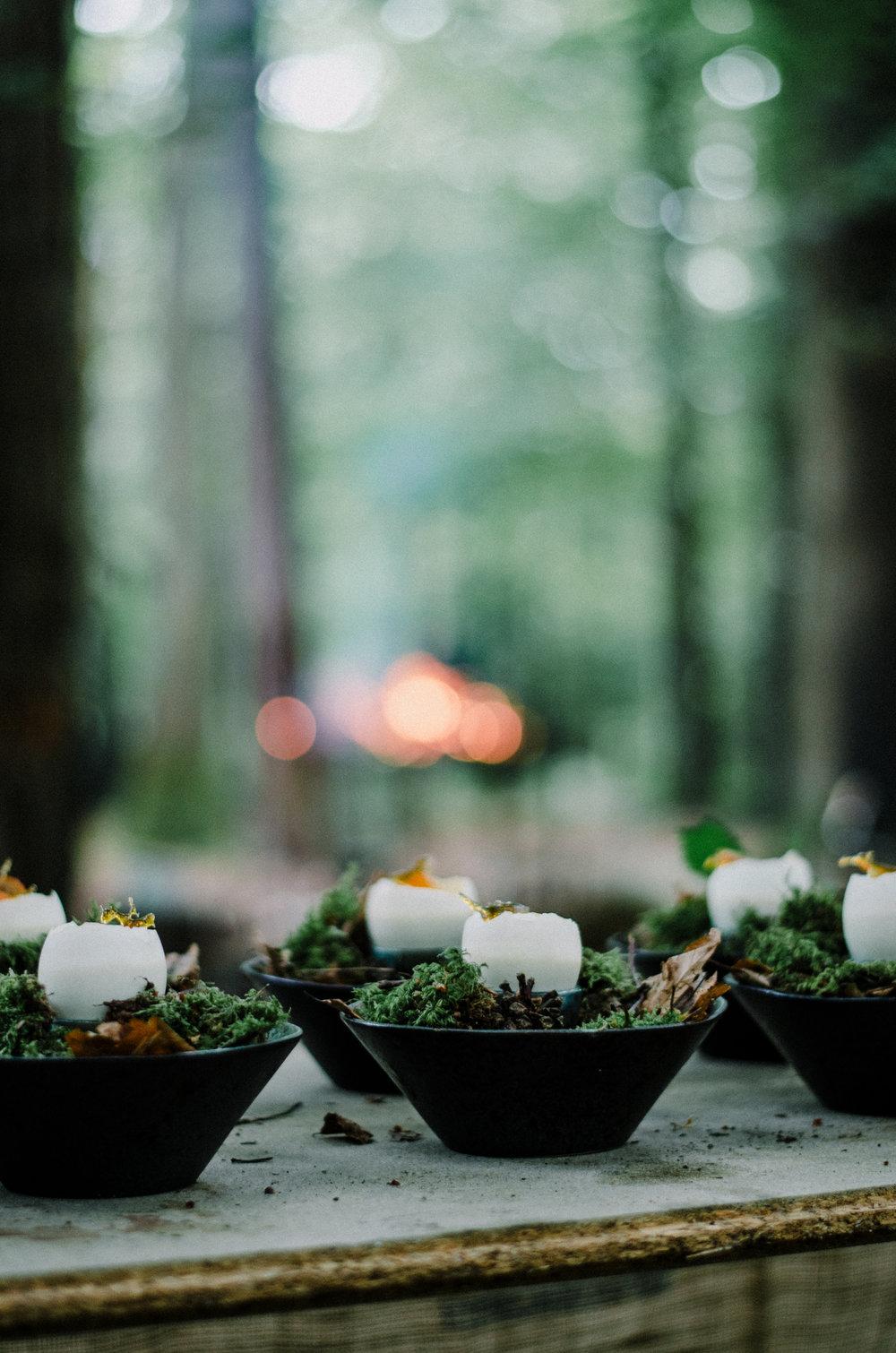 Gather with Fire & Wild - Aiste Saulyte Photography-71.jpg