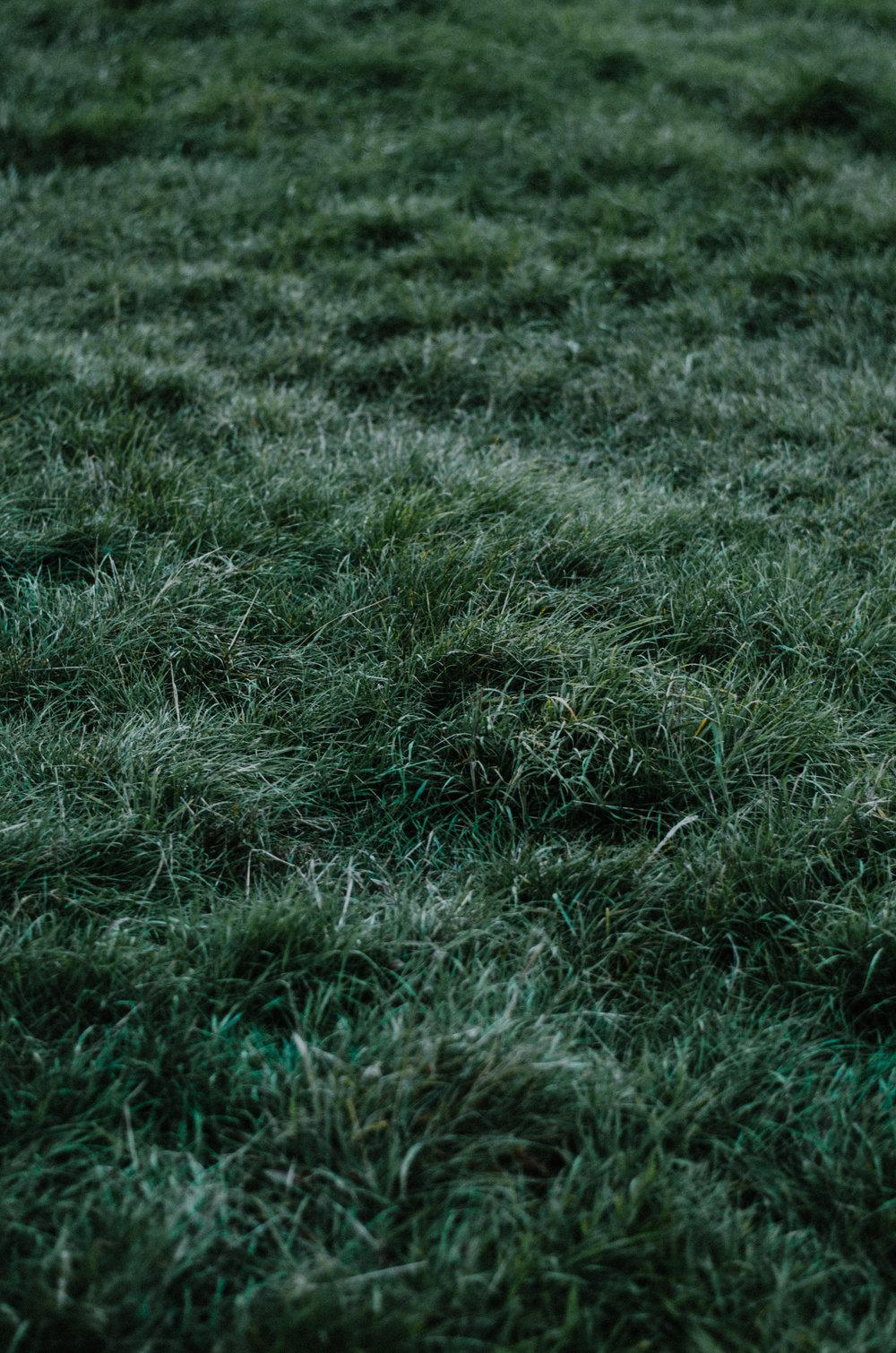 Slow Living Autumn Portraits - Aiste Saulyte Photography-200.jpg