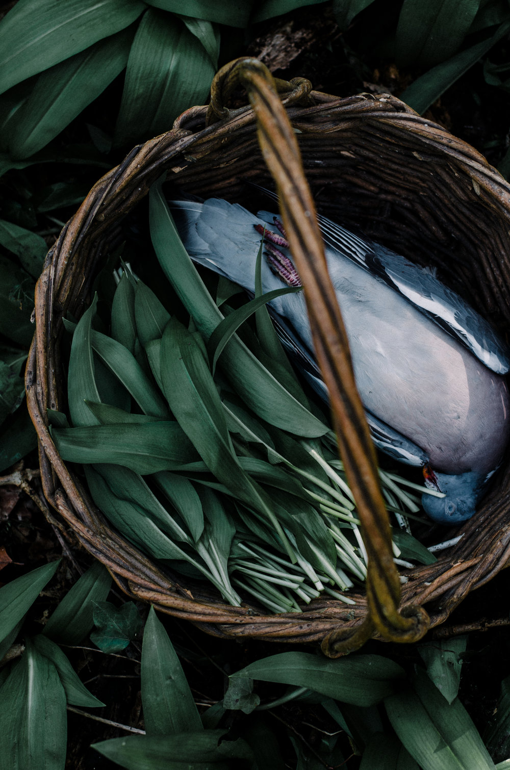 Fire & Wild- Wild Garlic & Campfire Dinner - Aiste Saulyte Photography-22.jpg
