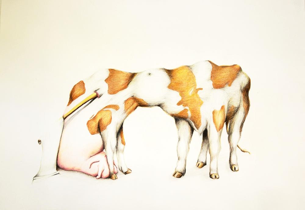 untitled, 2012, 50x70 cm, colour pencil on paper