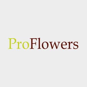 proflowers.jpg