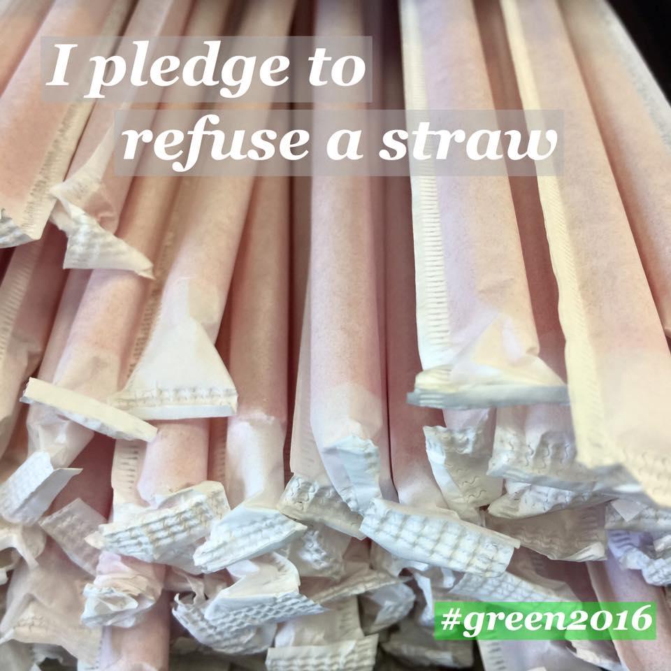 pledge 2.jpg