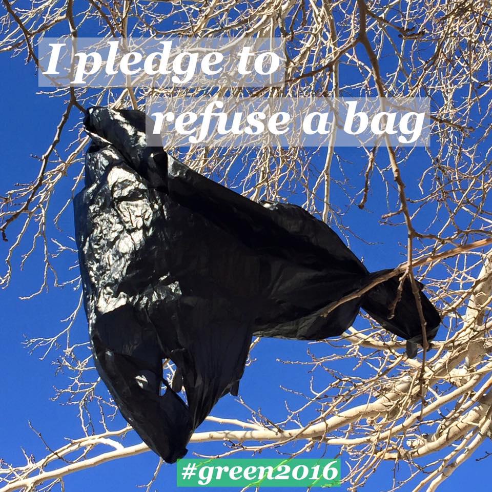 pledge 1.jpg