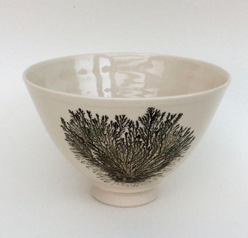 ABIGAIL NORTH CERAMICS / Click to view profile & shop