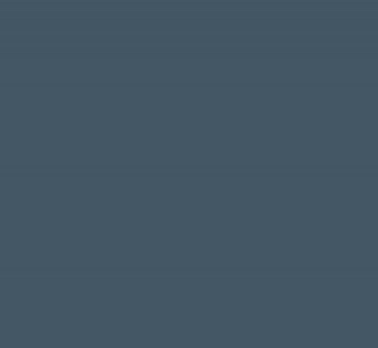 SEO & WEB TRAFFIC -