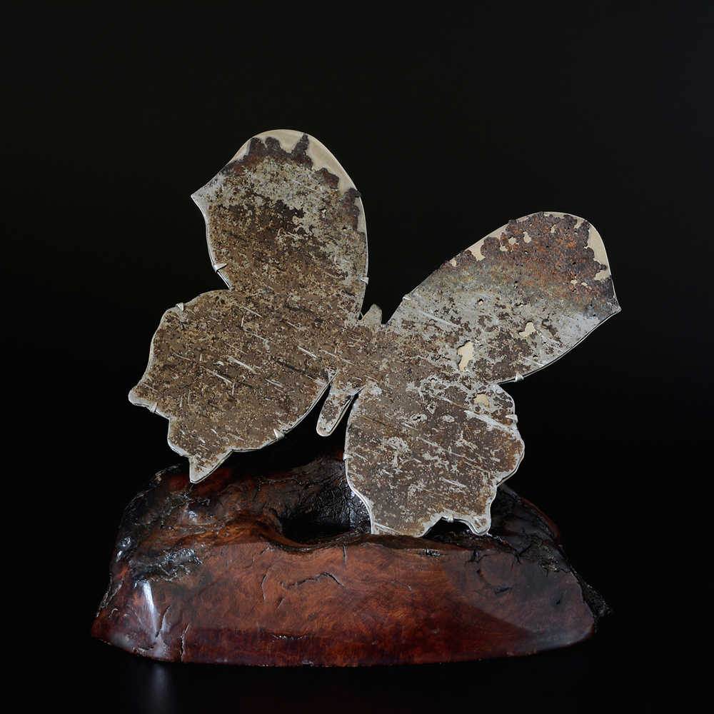 Butterfly Brooch  Found Iron, Sterling