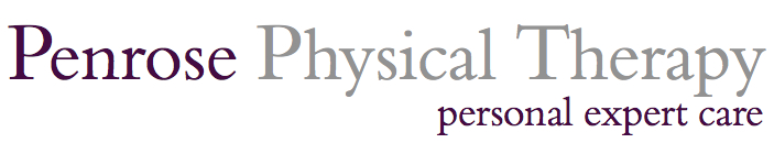 New Penrose Logo.jpg