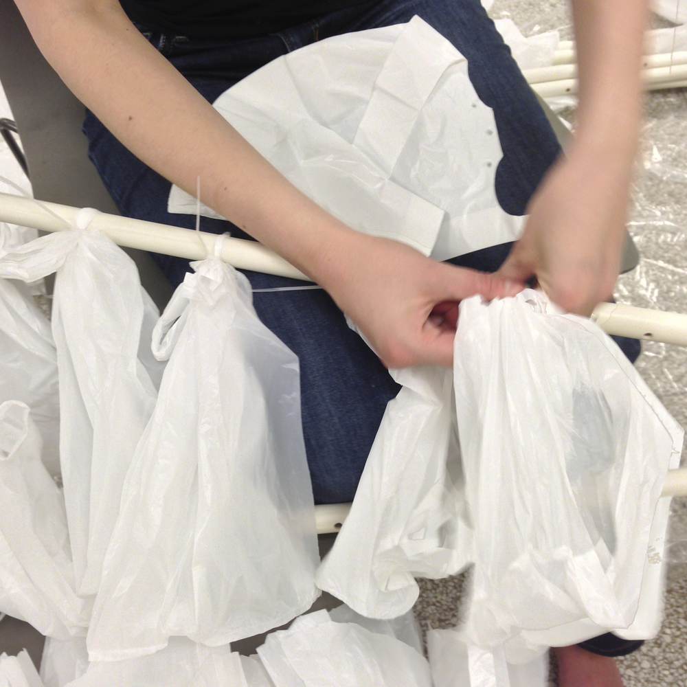bagging.jpg