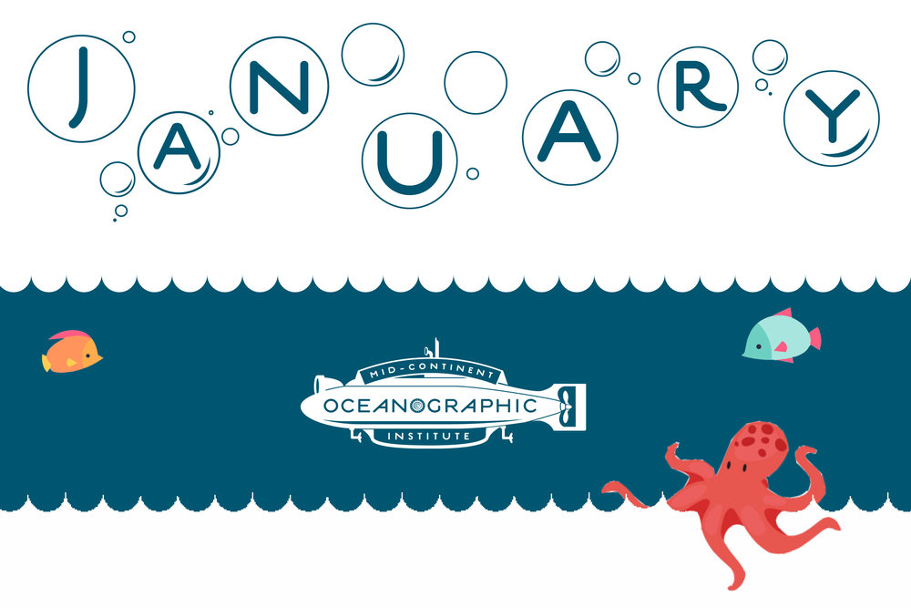 Newsletter header January.jpg