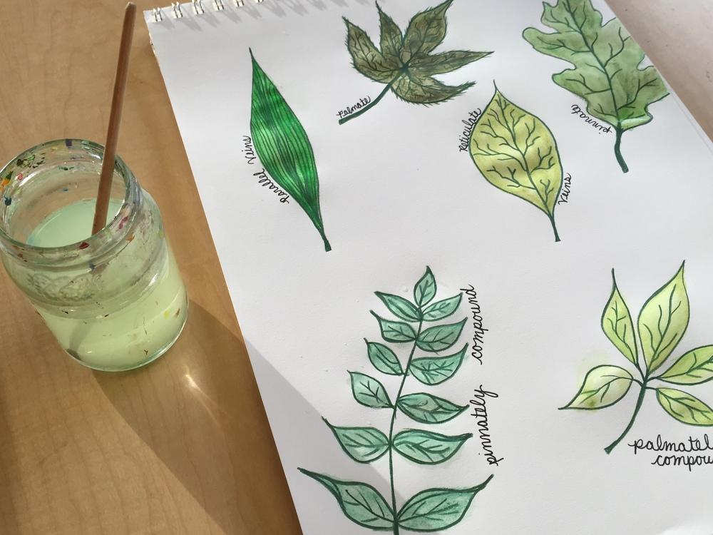 leaf paint 5.jpg