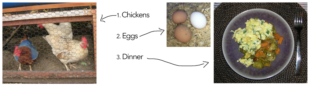 Chicken Eggs Dinner.jpg
