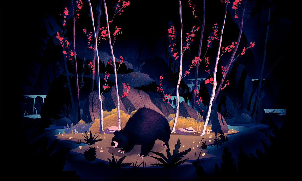"""The Most Patient Bear"" Illustration 1"