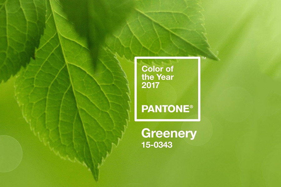 Pantone Greenery Green 2017 color of the year