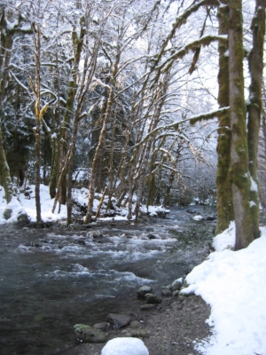 The creek in winter.