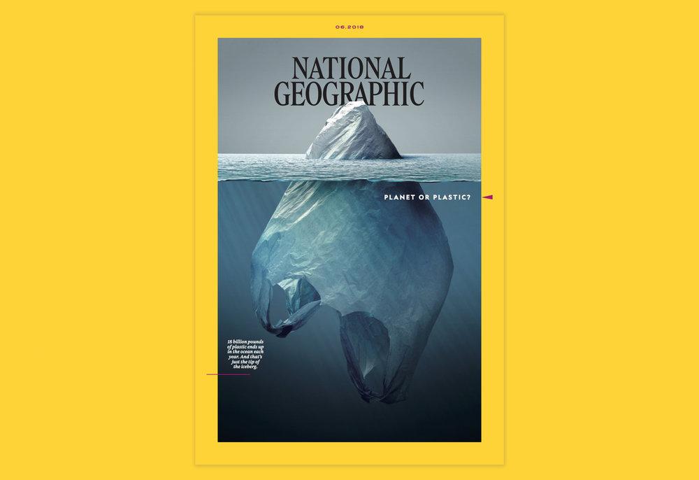 The Magazine.jpg